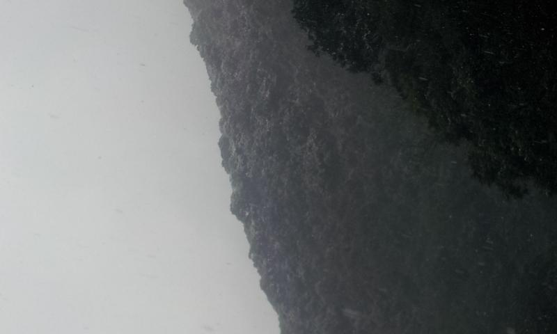20120125_145756.jpg